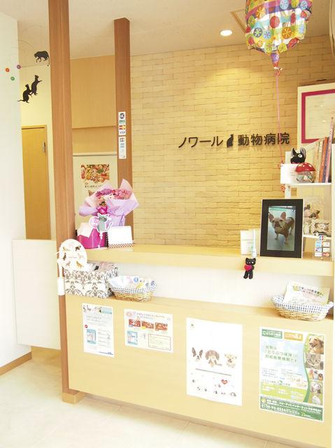 神奈川県、川崎市にある動物病院【中野島動物病院】